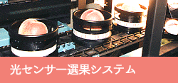 光センサー選果システムバナー