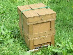 蜂の巣箱の写真