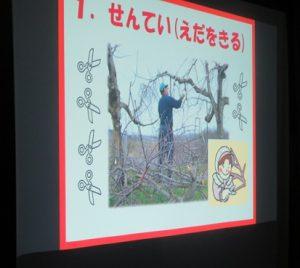 りんごの1年の説明画面